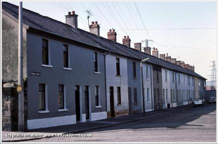 Steen's Row, 1982 (LH) by AE McAlpine